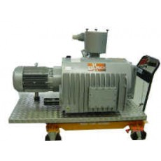 BUSCH 600 Vacuum Pump