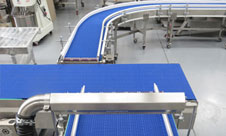 Custom Conveyor Systems for Meat & Food Industry